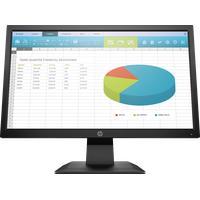 HP P204 Monitor 49,53cm (19.5 Zoll) 1600 x 900