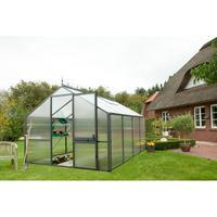 KGT Tulpe IV grün HKP 16 mm 12,7 m²